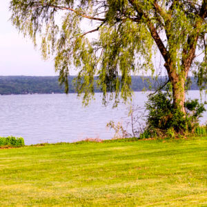 Smart Steps for Clean Water: Lakeshore Living
