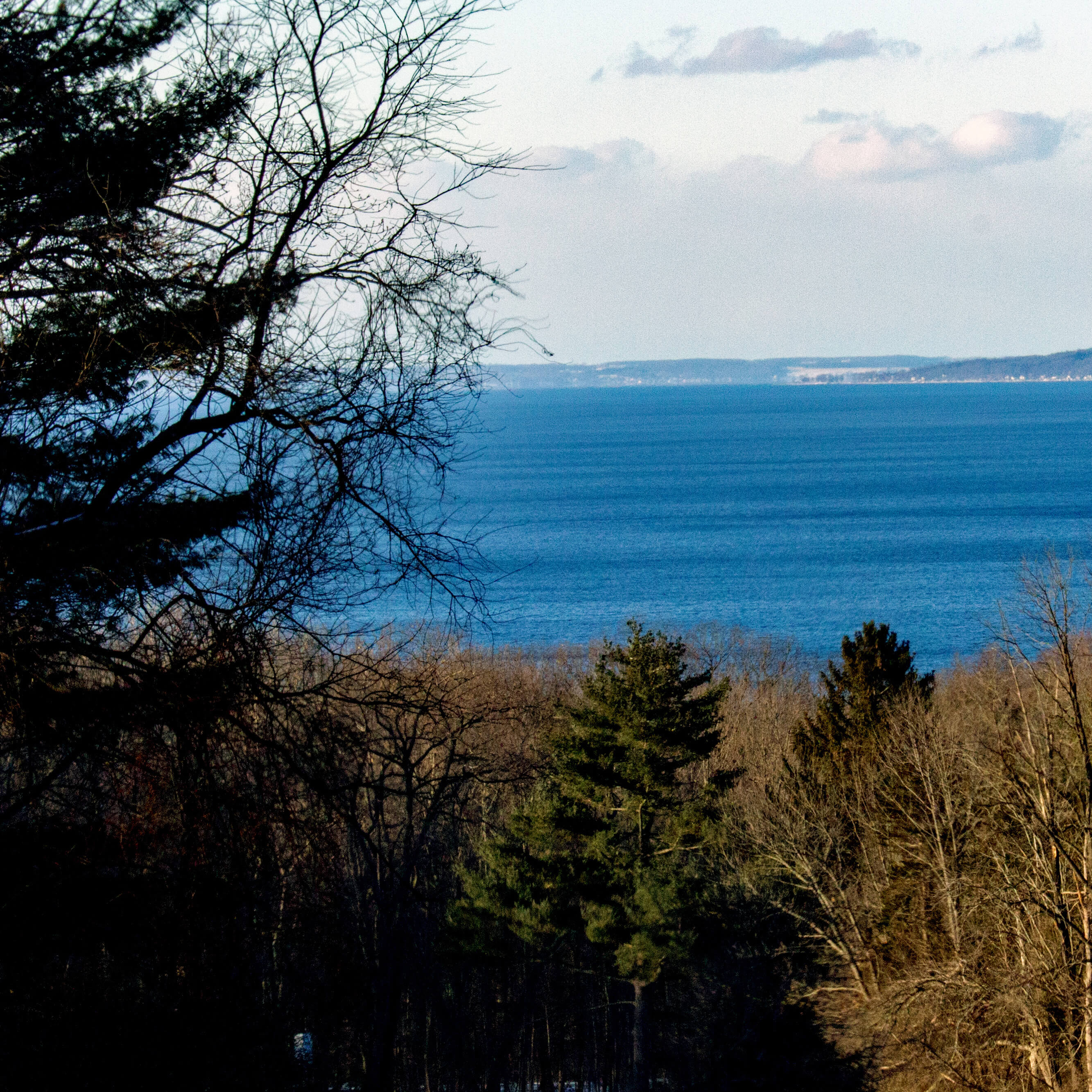 View of Cayuga Lake