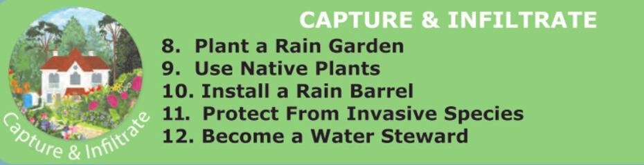 Capture and Infiltrate Water