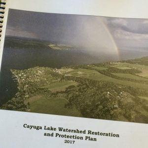 Restoration & Protection Plan