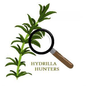 Hydrilla Hunters logo